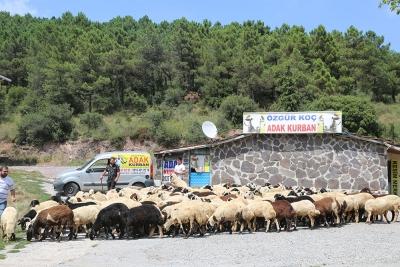 Kadıköy Ondokuzmayıs Mahallesi