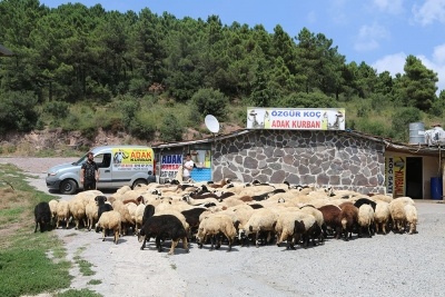 Kadıköy Suadiye Mahallesi Adak